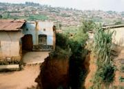 Nach dem Völkermord: Überlebensperspektiven ruandischer Frauen